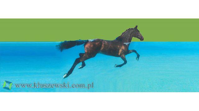 Basen pożarowy - basen dla koni